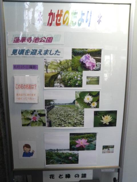 藤枝市緑をすすめる会総会